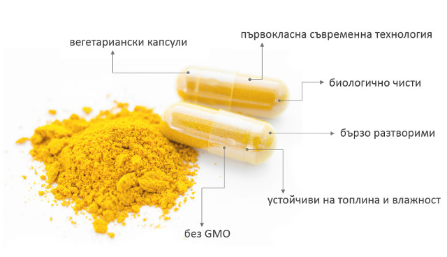 Куркумин х40 Др. Биомастер - капсули
